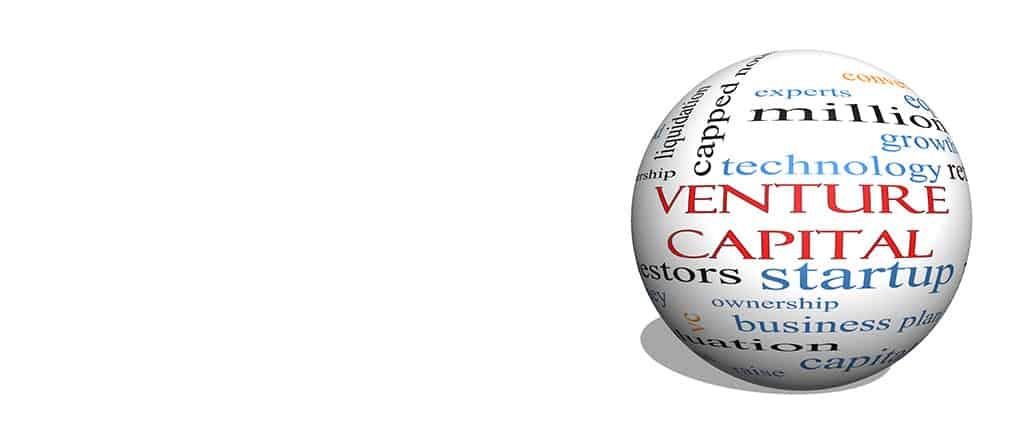 Venture Capital Schemes